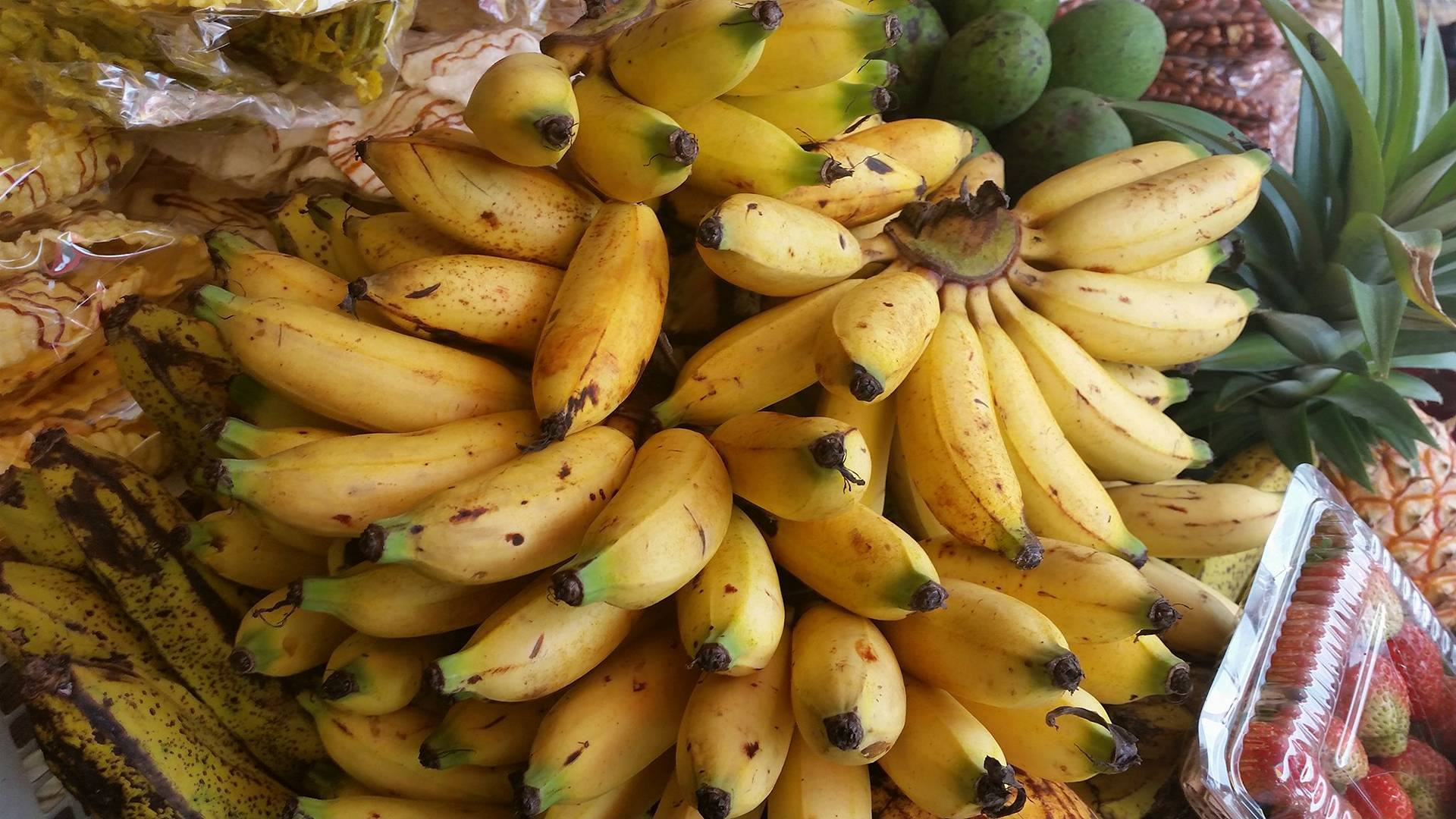 Image result for bali bananas